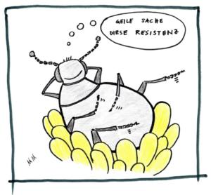 Rapsglanzkäfer