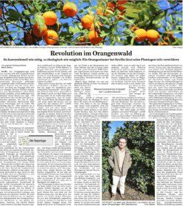 Orangenwald Revolution - Sevilla
