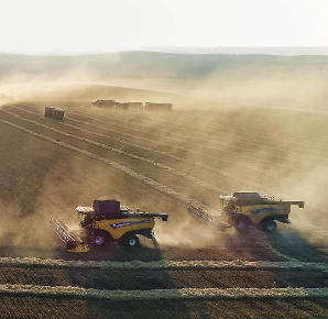 Getreideernte 2019