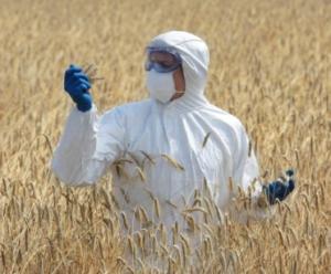 Pestizide: Giftcocktails in den Nahrungsmitteln