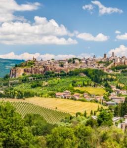 Liberi dai pesticidi: l'Italia comincia dai Comuni