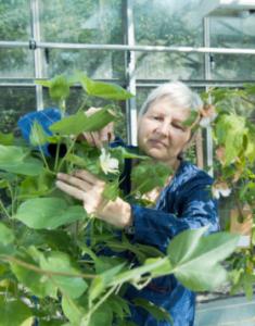 Bio-Anbau würde 600 Tonnen Pestizide sparen