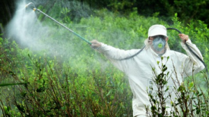 70 Comuni italiani ne vietano l'uso e puntano sull' agroecologia