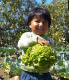 Unterernährung in Lateinamerika: Jeder neunte Mensch hungert.